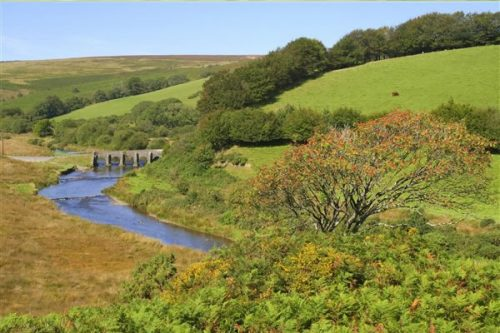 Exmoor Photography
